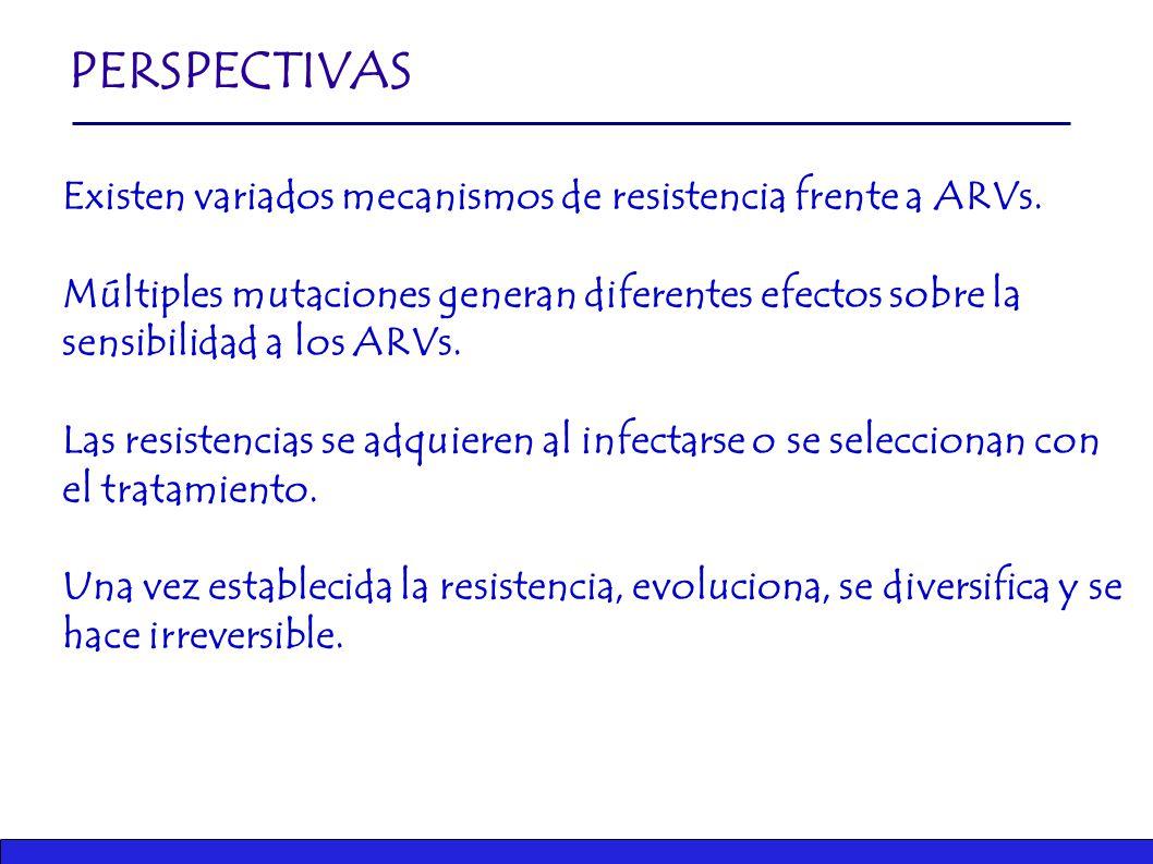 Existen variados mecanismos de resistencia frente a ARVs.