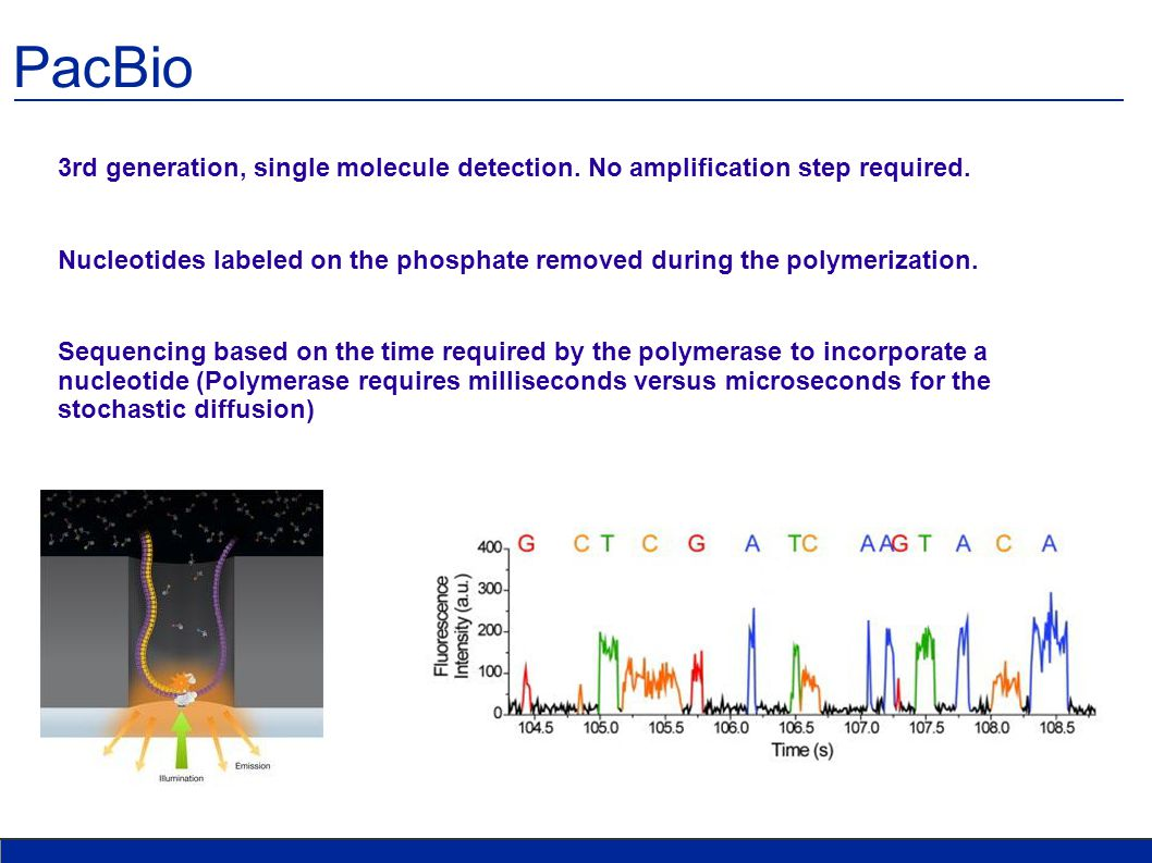 PacBio 3rd generation, single molecule detection. No amplification step required.