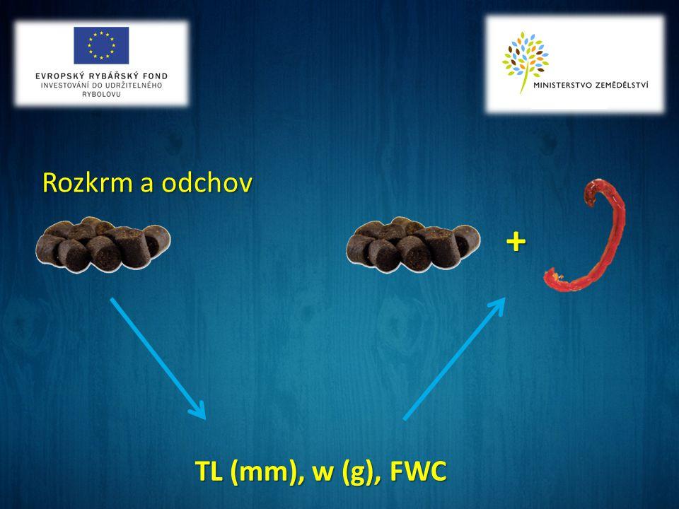Rozkrm a odchov TL (mm), w (g), FWC +