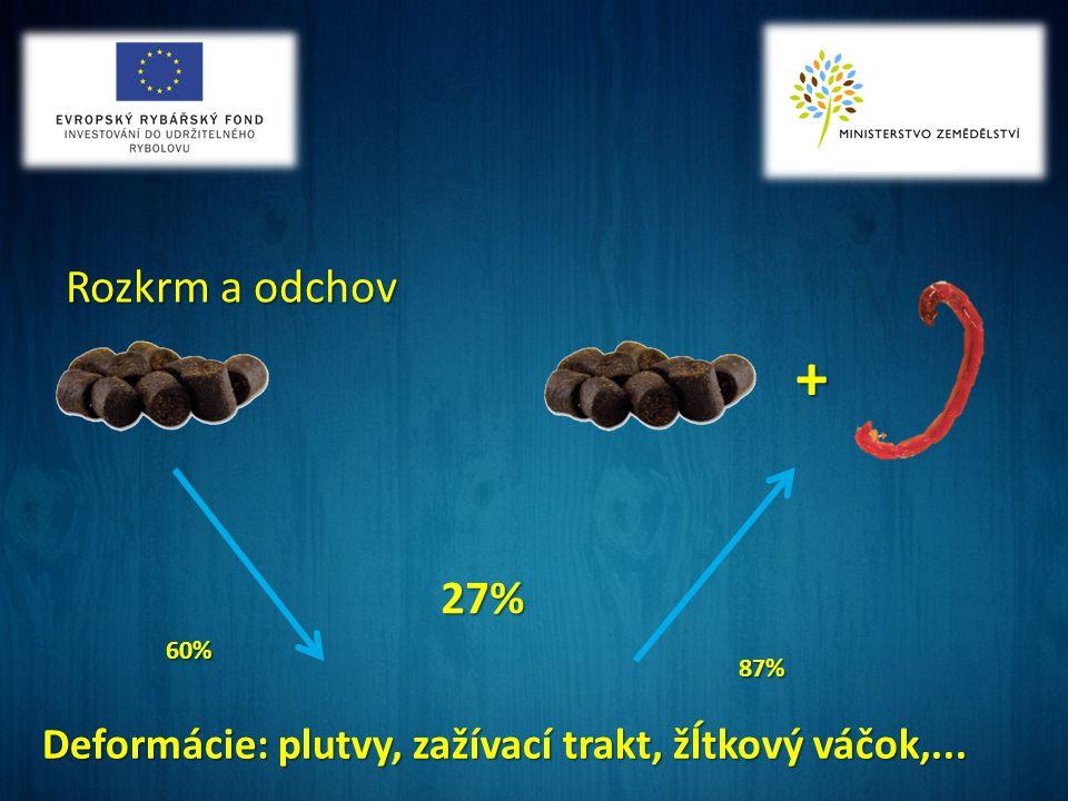 Rozkrm a odchov Deformácie: plutvy, zažívací trakt, žĺtkový váčok,... 60% 87% 27% +