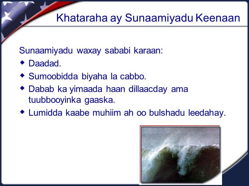 Khataraha ay Sunaamiyadu Keenaan Sunaamiyadu waxay sababi karaan:  Daadad.