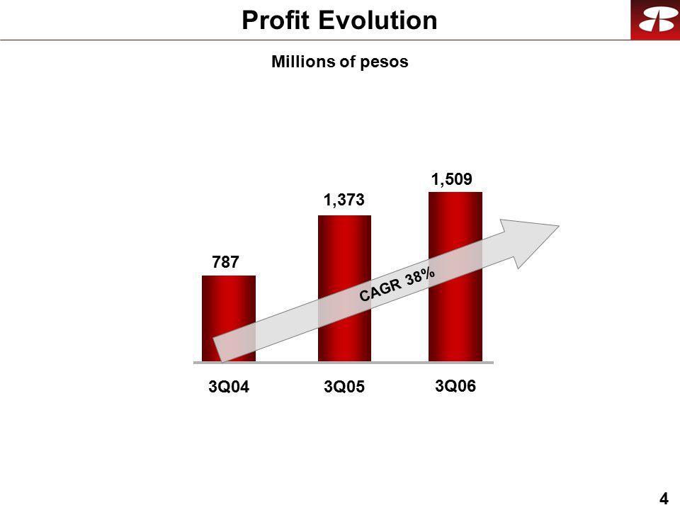 4 Profit Evolution Millions of pesos 787 3Q043Q05 1,509 3Q06 1,373 CAGR 38%