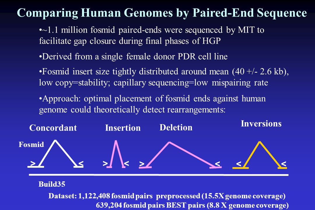 Comparing Human Genomes by Paired-End Sequence ~1.1 million fosmid paired-ends were sequenced by MIT to facilitate gap closure during final phases of HGP Fosmid insert size tightly distributed around mean (40 +/- 2.6 kb), low copy=stability; capillary sequencing=low mispairing rate Derived from a single female donor PDR cell line Approach: optimal placement of fosmid ends against human genome could theoretically detect rearrangements: Inversions << Insertion >< Deletion >< Concordant >< Build35 Fosmid Dataset: 1,122,408 fosmid pairs preprocessed (15.5X genome coverage) 639,204 fosmid pairs BEST pairs (8.8 X genome coverage)