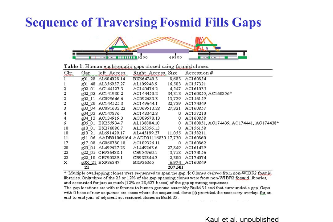 Kaul et al, unpublished Sequence of Traversing Fosmid Fills Gaps
