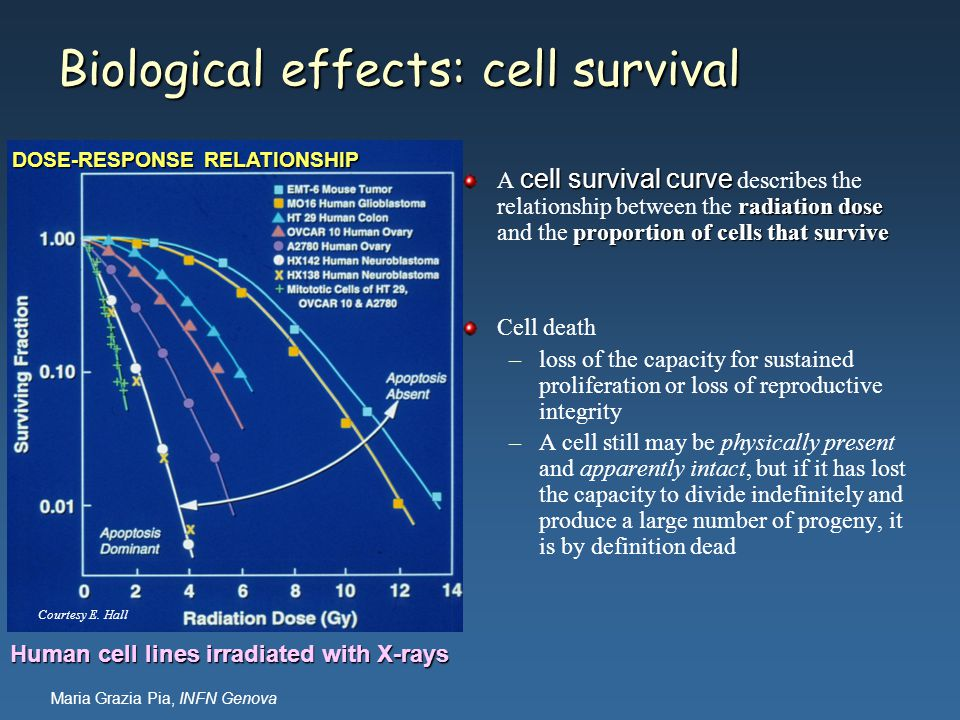 Maria Grazia Pia, INFN Genova Biological effects: cell survival cell survival curve radiation dose proportion of cells that survive A cell survival cu