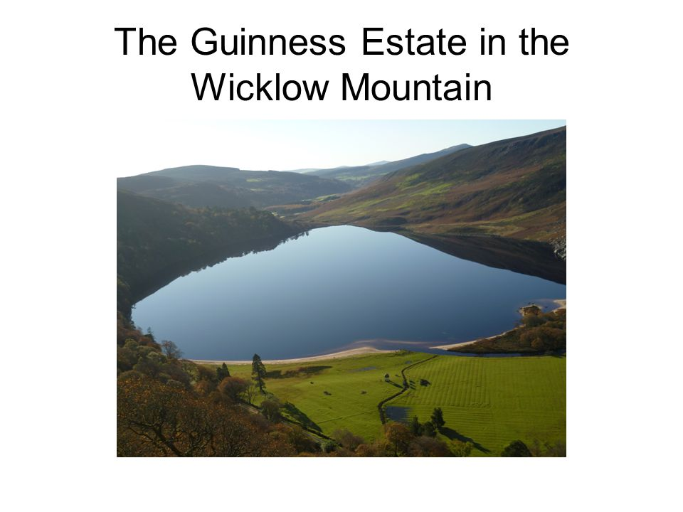 The Guinness Estate in the Wicklow Mountain
