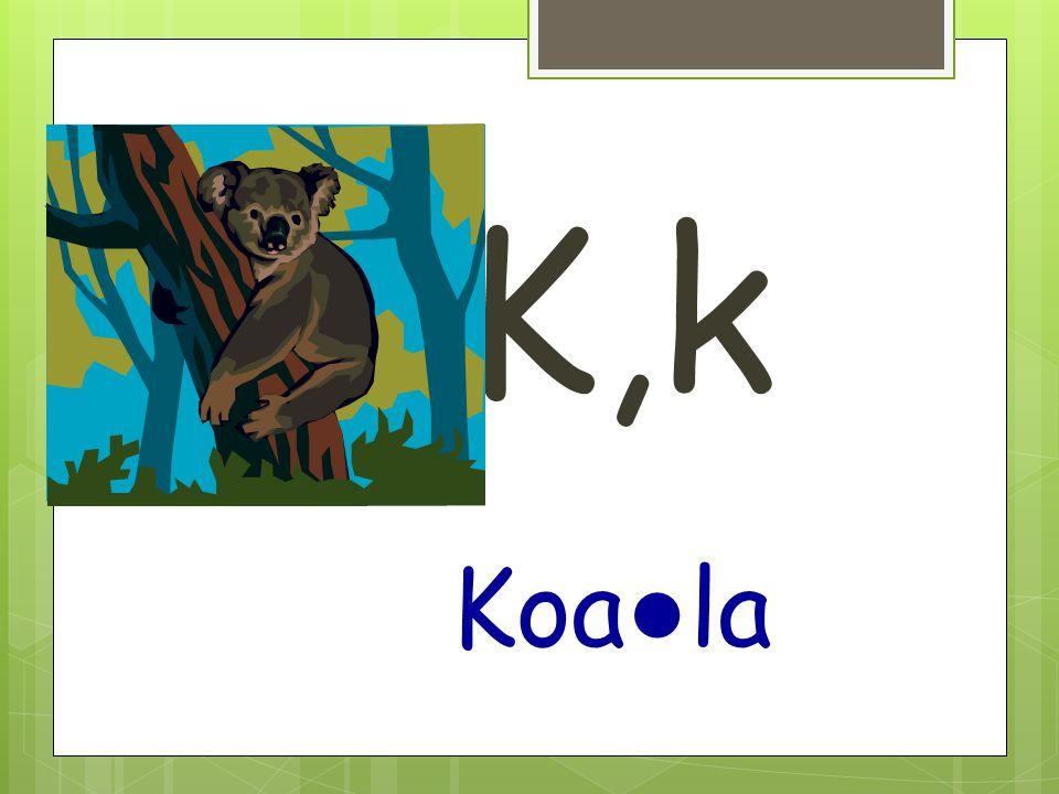 K,k Koa ● la