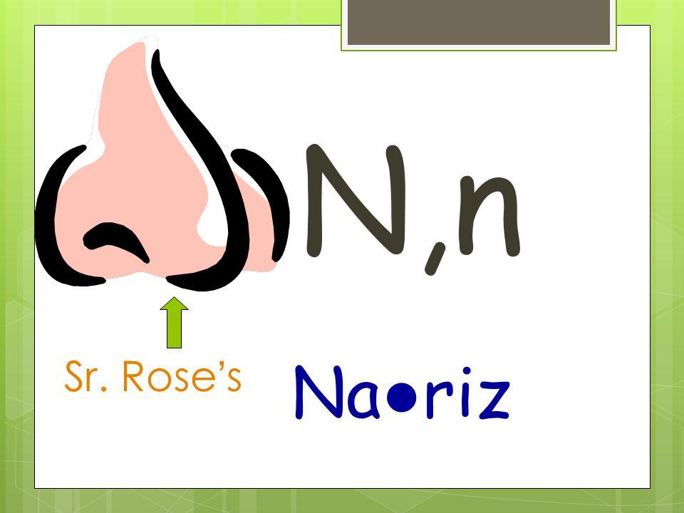 N,n Na ● riz Sr. Rose's