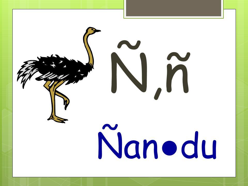 Ñ,ñ Ñan ● du
