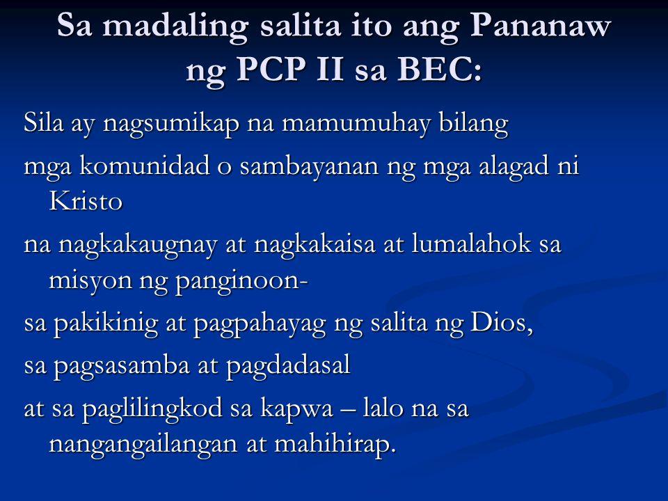 Sa madaling salita ito ang Pananaw ng PCP II sa BEC: Sila ay nagsumikap na mamumuhay bilang mga komunidad o sambayanan ng mga alagad ni Kristo na nagk