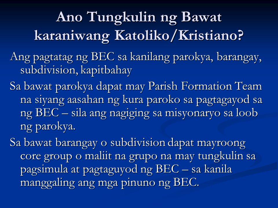 Ano Tungkulin ng Bawat karaniwang Katoliko/Kristiano? Ang pagtatag ng BEC sa kanilang parokya, barangay, subdivision, kapitbahay Sa bawat parokya dapa