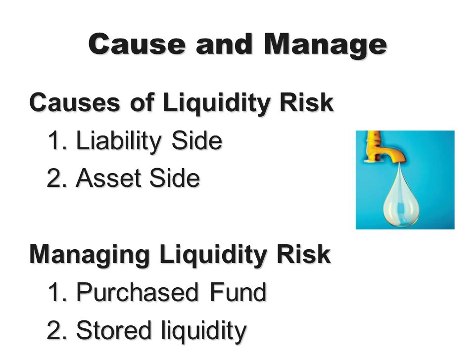 Cause and Manage Causes of Liquidity Risk 1. Liability Side 2. Asset Side Managing Liquidity Risk 1. Purchased Fund 2. Stored liquidity