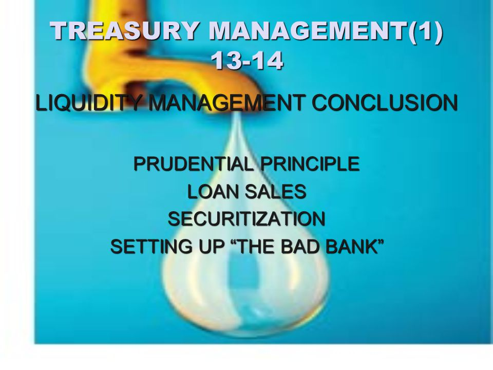 TREASURY MANAGEMENT(1) 13-14 LIQUIDITY MANAGEMENT CONCLUSION PRUDENTIAL PRINCIPLE LOAN SALES SECURITIZATION SETTING UP THE BAD BANK