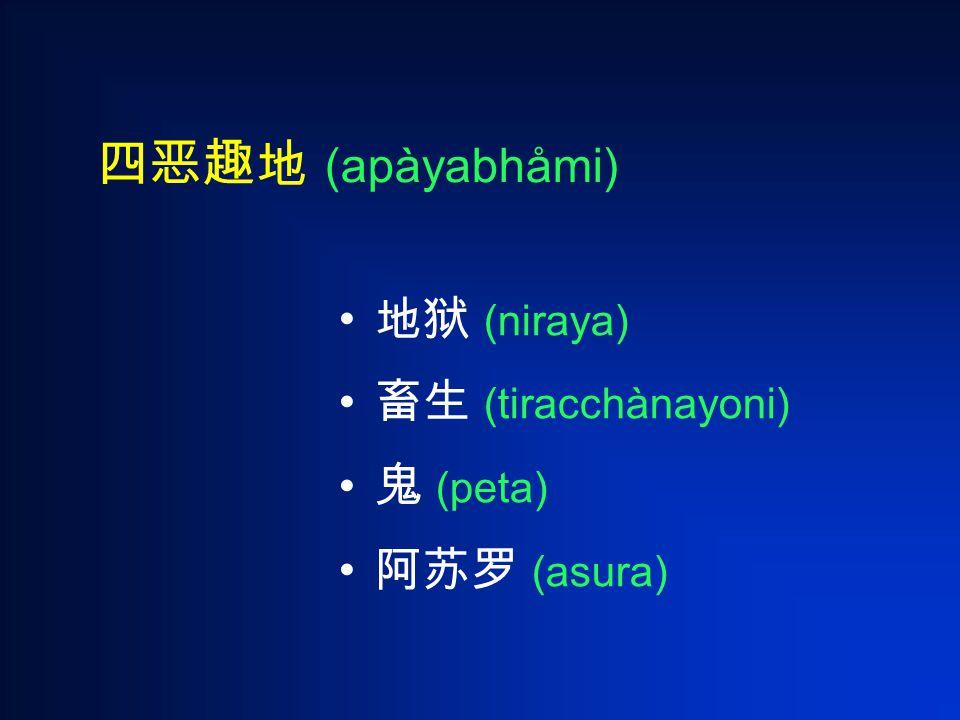 四恶趣地 (apàyabhåmi) 地狱 (niraya) 畜生 (tiracchànayoni) 鬼 (peta) 阿苏罗 (asura)