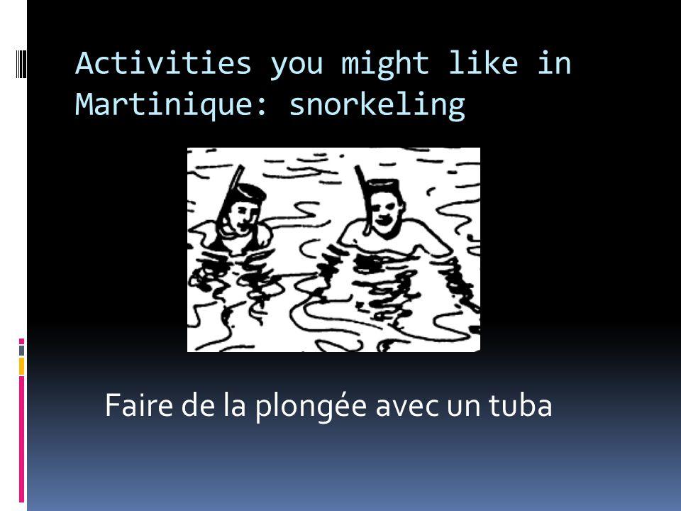 Activities you might like in Martinique: snorkeling Faire de la plongée avec un tuba