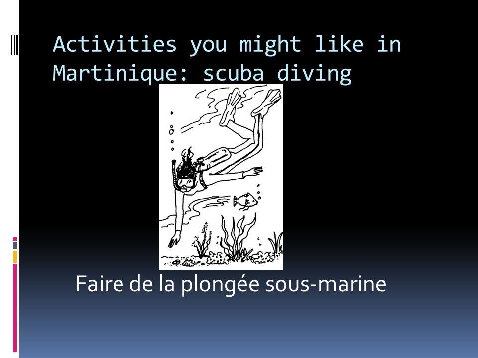 Activities you might like in Martinique: scuba diving Faire de la plongée sous-marine