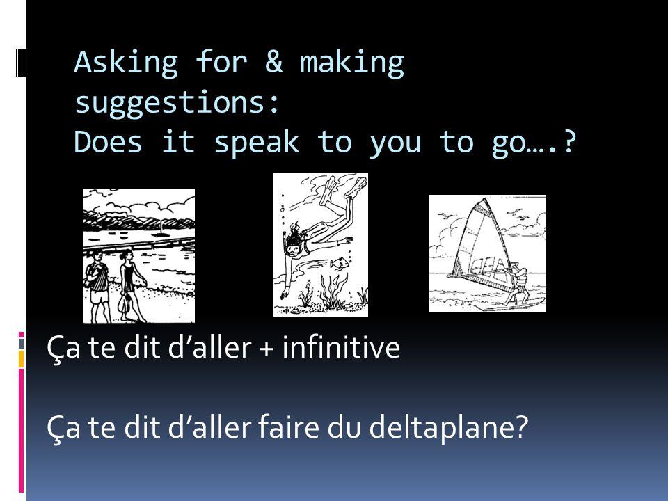 Asking for & making suggestions: Does it speak to you to go….? Ça te dit d'aller + infinitive Ça te dit d'aller faire du deltaplane?