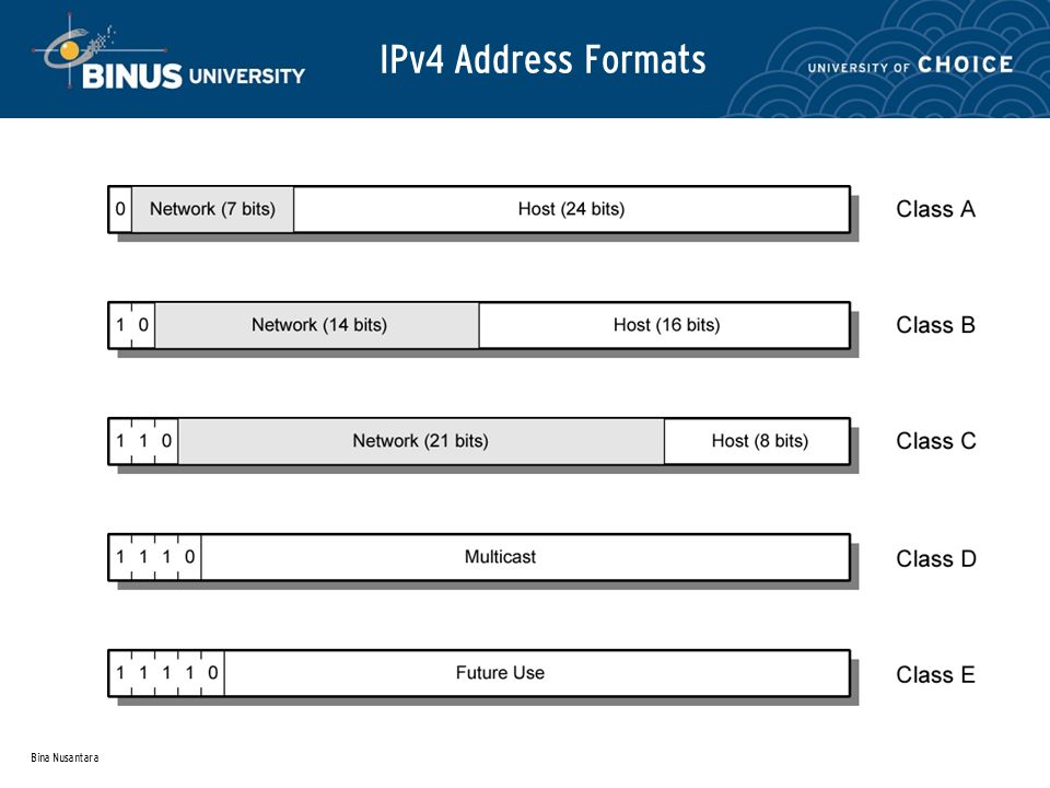 Bina Nusantara IPv4 Address Formats