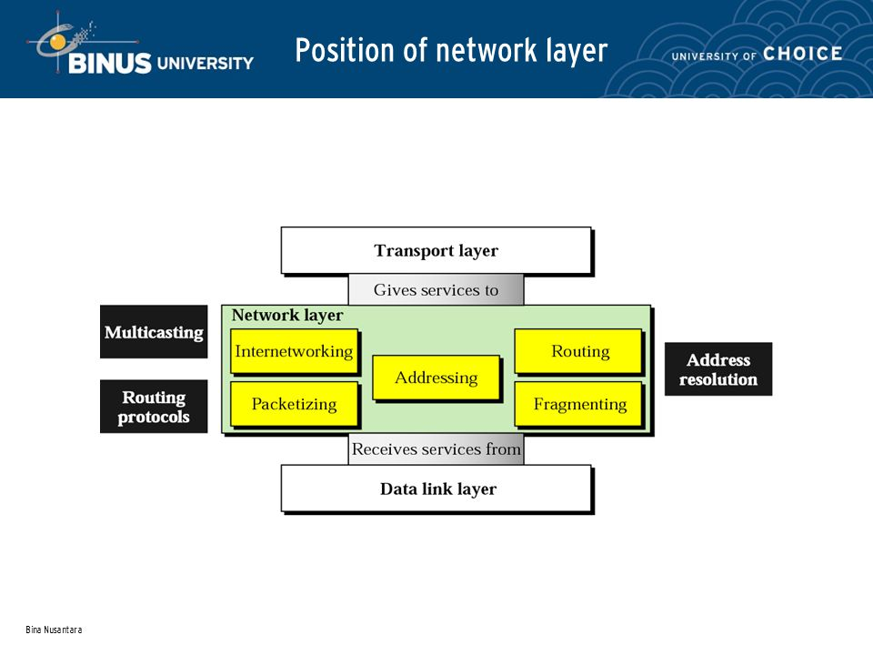 Bina Nusantara Position of network layer