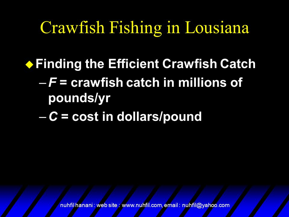 nuhfil hanani : web site : www.nuhfil.com, email : nuhfil@yahoo.com Crawfish Fishing in Lousiana u Finding the Efficient Crawfish Catch –F = crawfish catch in millions of pounds/yr –C = cost in dollars/pound