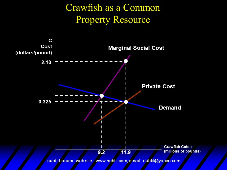 nuhfil hanani : web site : www.nuhfil.com, email : nuhfil@yahoo.com Crawfish Catch (millions of pounds) C Cost (dollars/pound) Demand Marginal Social Cost Private Cost Crawfish as a Common Property Resource 11.9 2.10 9.2 0.325