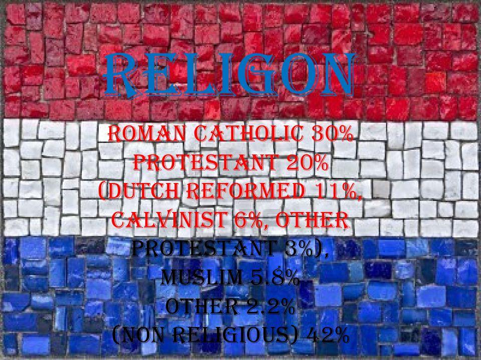 RELIGON Roman Catholic 30% Protestant 20% (Dutch Reformed 11%, Calvinist 6%, Other Protestant 3%), Muslim 5.8% Other 2.2% (Non Religious) 42%