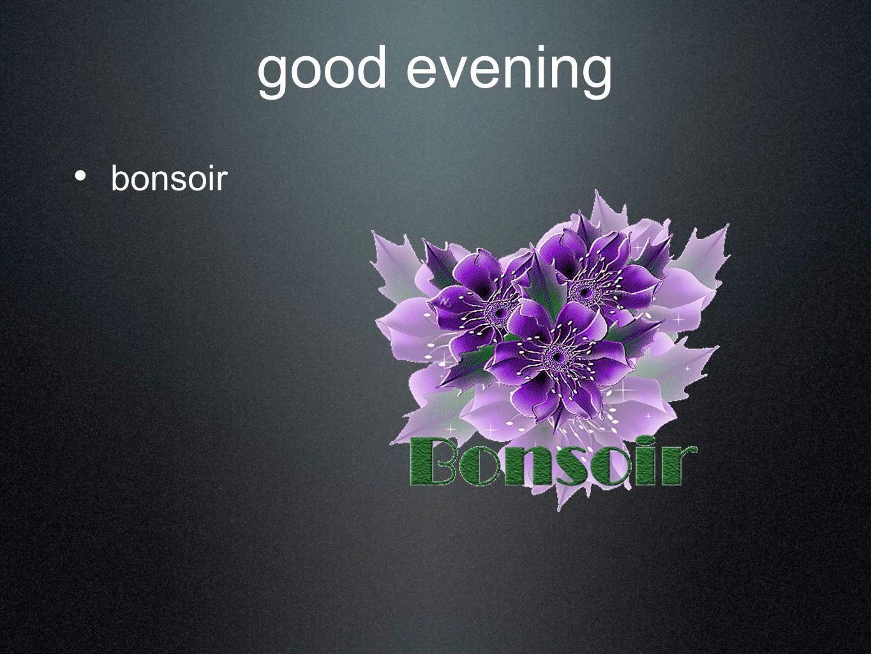good evening bonsoir