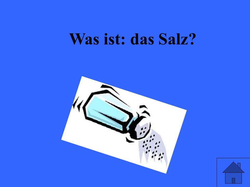 Was ist: das Salz