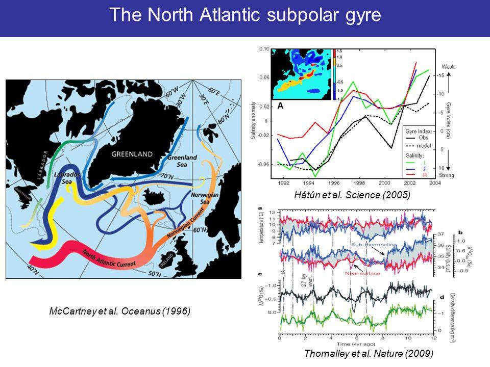 8/13 The North Atlantic subpolar gyre McCartney et al.