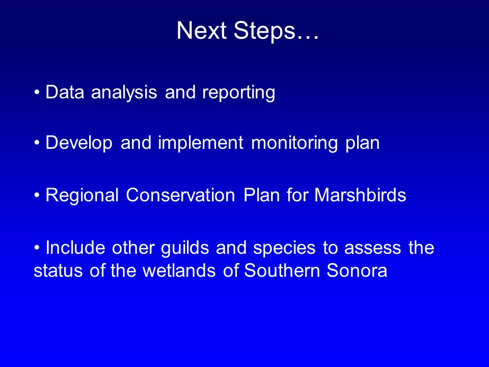 Next Steps… Data analysis and reporting Develop and implement monitoring plan Regional Conservation Plan for Marshbirds Include other guilds and species to assess the status of the wetlands of Southern Sonora