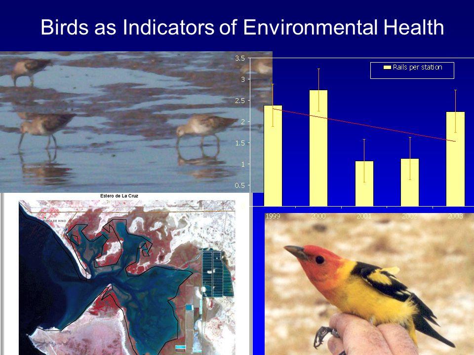 Birds as Indicators of Environmental Health