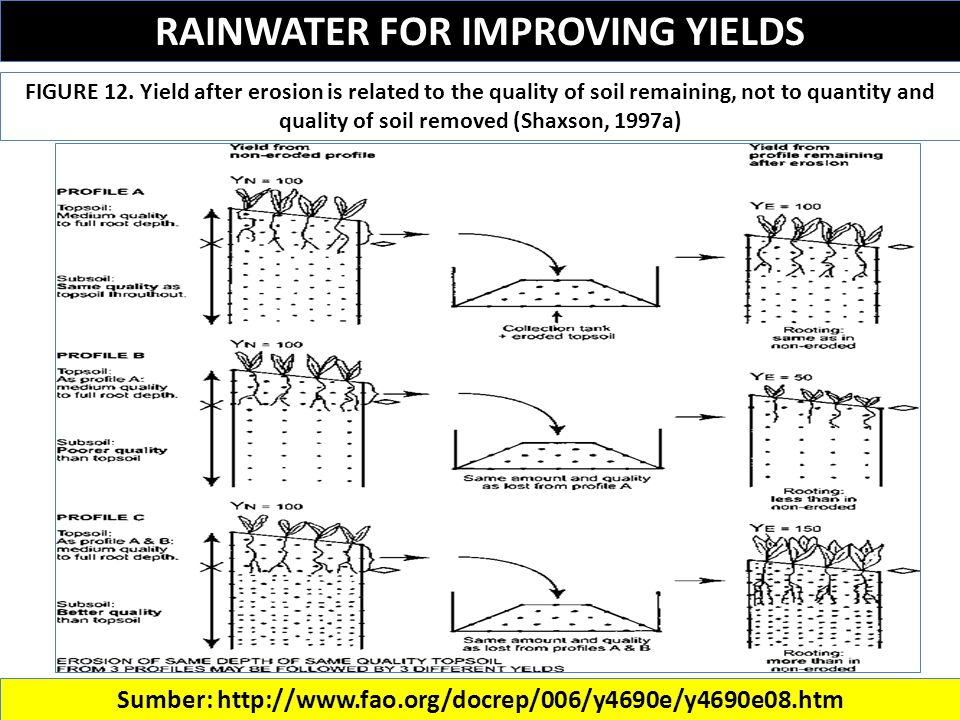RAINWATER FOR IMPROVING YIELDS Sumber: http://www.fao.org/docrep/006/y4690e/y4690e08.htm FIGURE 12.