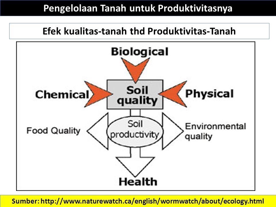 Pengelolaan Tanah untuk Produktivitasnya Sumber: http://www.naturewatch.ca/english/wormwatch/about/ecology.html Efek kualitas-tanah thd Produktivitas-Tanah