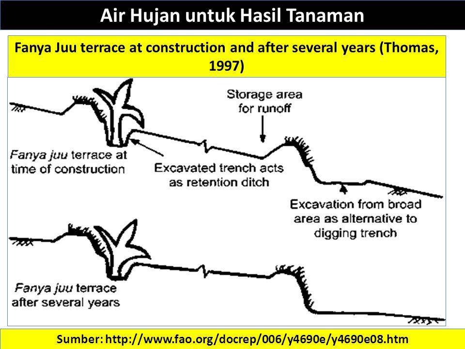 Sumber: http://www.fao.org/docrep/006/y4690e/y4690e08.htm Fanya Juu terrace at construction and after several years (Thomas, 1997) Air Hujan untuk Hasil Tanaman