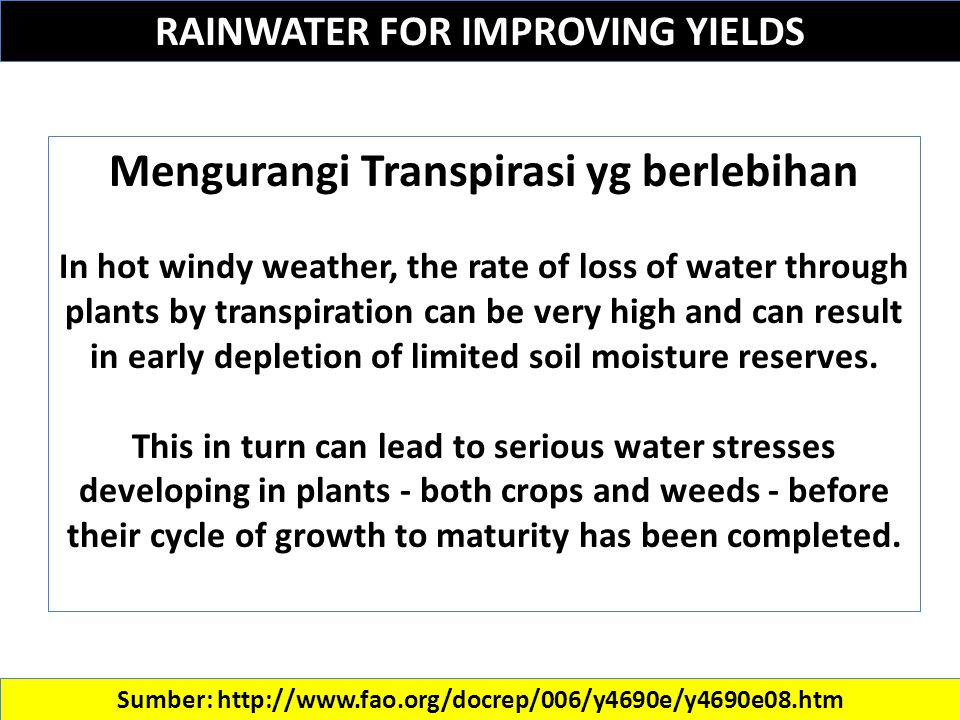 RAINWATER FOR IMPROVING YIELDS Sumber: http://www.fao.org/docrep/006/y4690e/y4690e08.htm Mengurangi Transpirasi yg berlebihan In hot windy weather, the rate of loss of water through plants by transpiration can be very high and can result in early depletion of limited soil moisture reserves.
