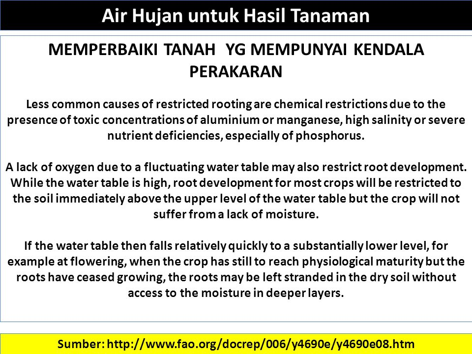 Sumber: http://www.fao.org/docrep/006/y4690e/y4690e08.htm MEMPERBAIKI TANAH YG MEMPUNYAI KENDALA PERAKARAN Less common causes of restricted rooting are chemical restrictions due to the presence of toxic concentrations of aluminium or manganese, high salinity or severe nutrient deficiencies, especially of phosphorus.
