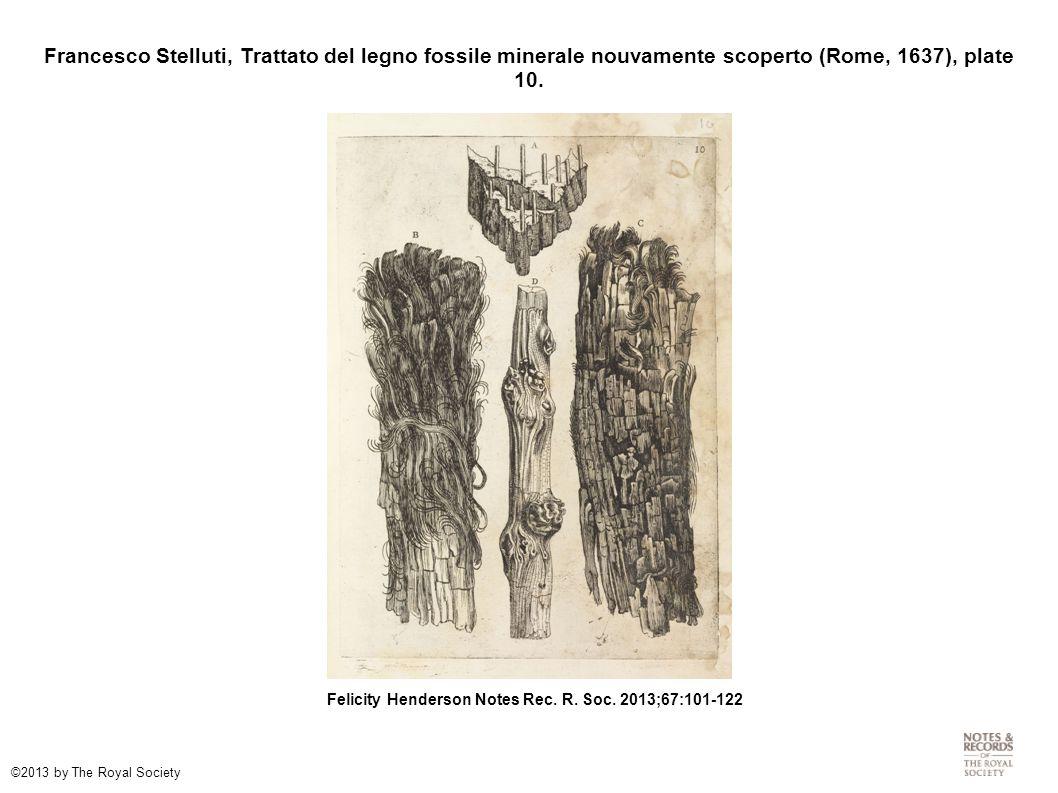 Francesco Stelluti, Trattato del legno fossile minerale nouvamente scoperto (Rome, 1637), plate 10. Felicity Henderson Notes Rec. R. Soc. 2013;67:101-