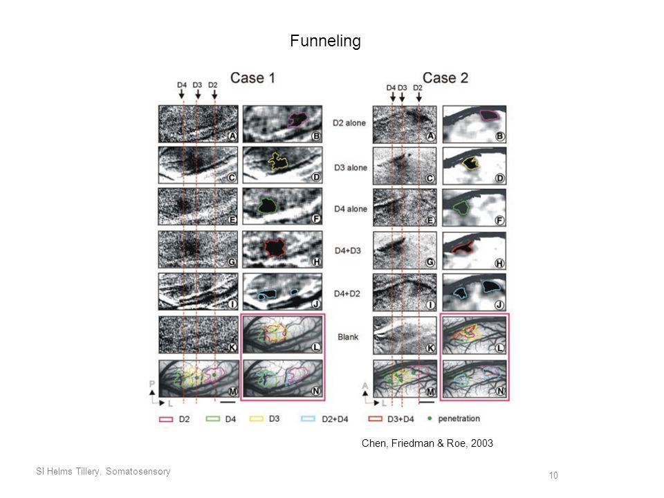 SI Helms Tillery, Somatosensory 10 Funneling Chen, Friedman & Roe, 2003