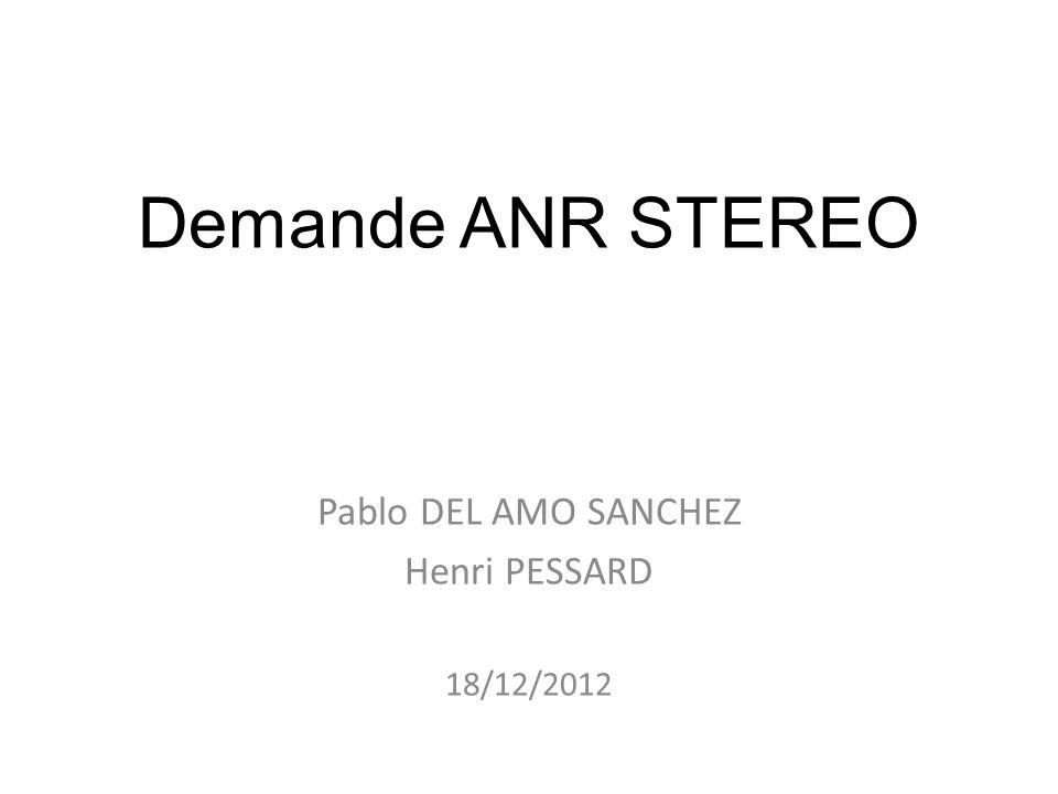 Demande ANR STEREO Pablo DEL AMO SANCHEZ Henri PESSARD 18/12/2012