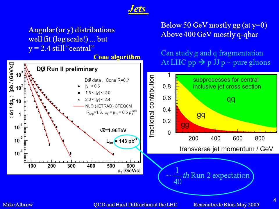 Mike AlbrowRencontre de Blois May 2005QCD and Hard Diffraction at the LHC 4 Jets Angular (or y) distributions well fit (log scale!)... but y = 2.4 sti
