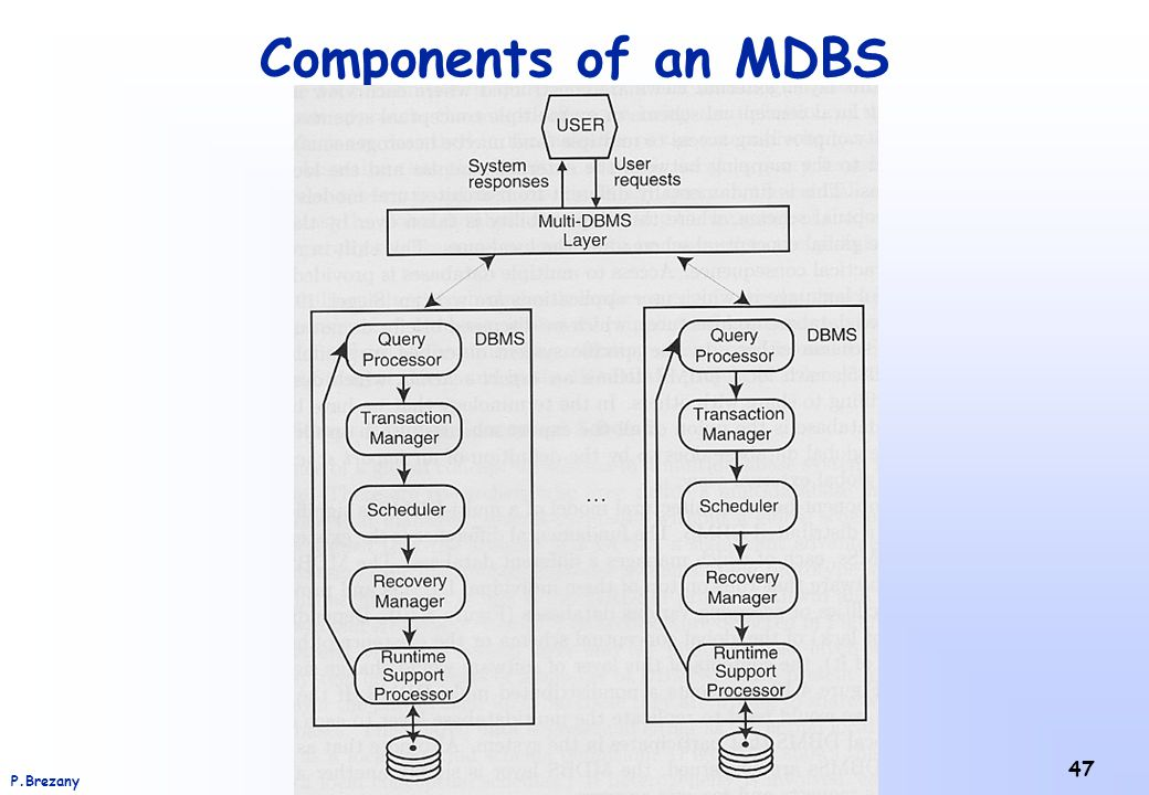 Institut für Scientific Computing – Universität WienP.Brezany 47 Components of an MDBS