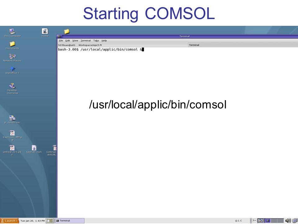 Starting COMSOL