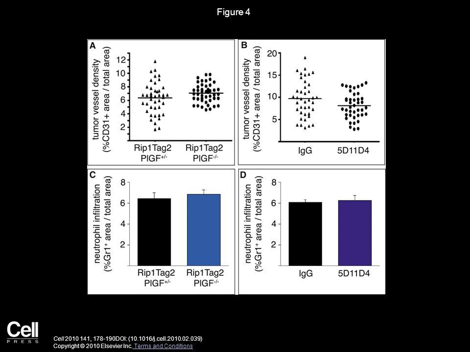 Figure 4 Cell 2010 141, 178-190DOI: (10.1016/j.cell.2010.02.039) Copyright © 2010 Elsevier Inc.