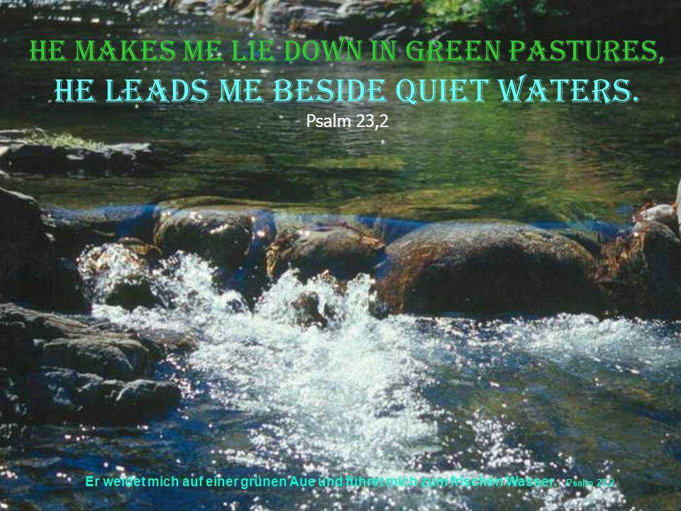 Er weidet mich auf einer grünen Aue und führet mich zum frischen Wasser.