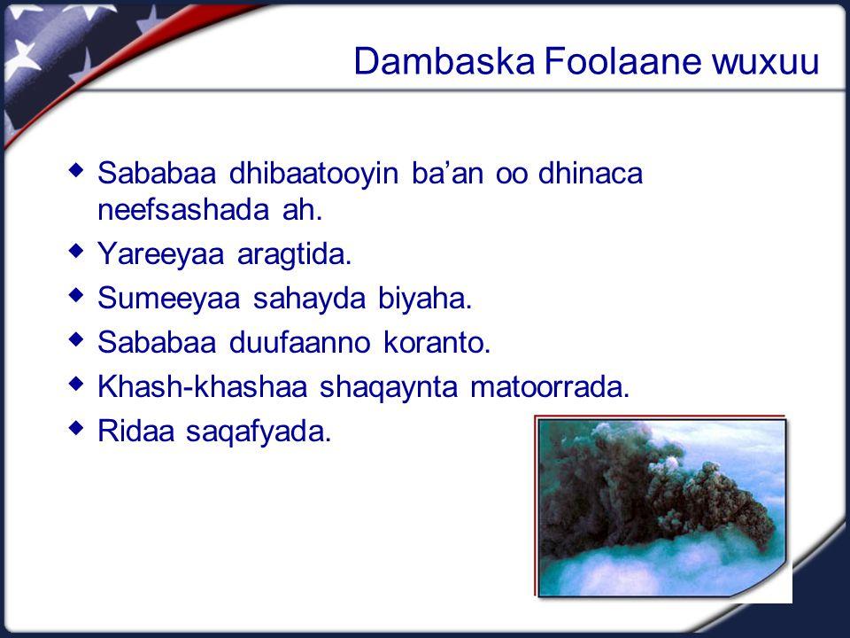 Dambaska Foolaane wuxuu  Sababaa dhibaatooyin ba'an oo dhinaca neefsashada ah.