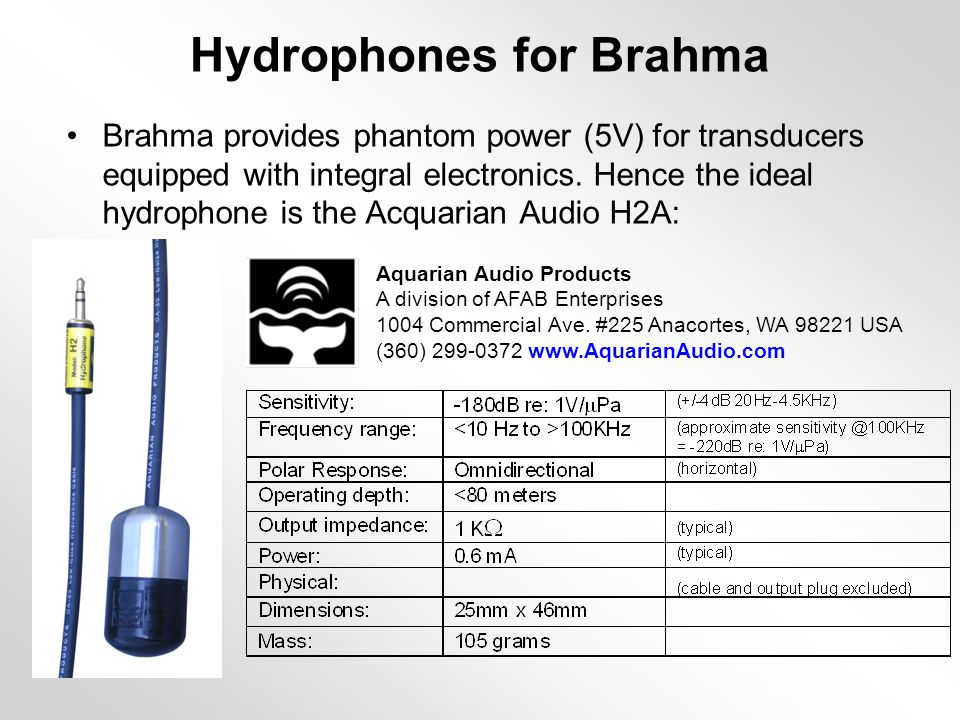 Hydrophones for Brahma Brahma provides phantom power (5V) for transducers equipped with integral electronics.