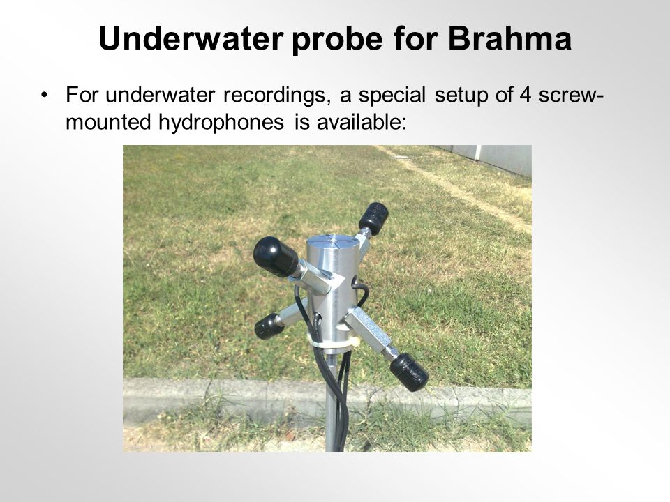 Underwater probe for Brahma For underwater recordings, a special setup of 4 screw- mounted hydrophones is available: