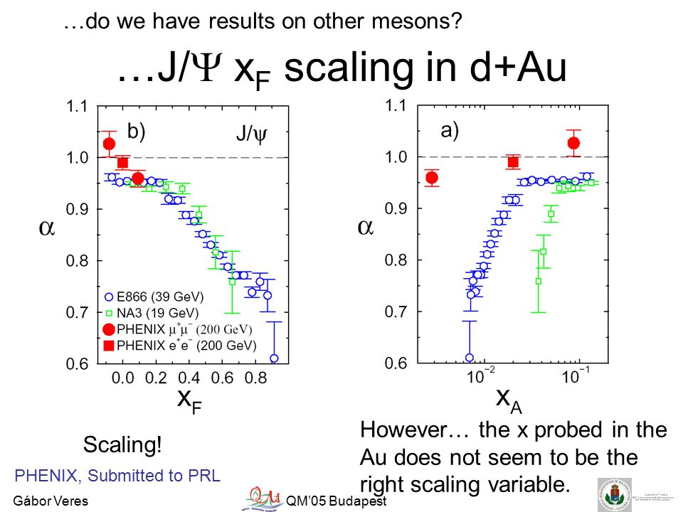 Gábor VeresQM'05 Budapest …J/  x F scaling in d+Au …do we have results on other mesons.