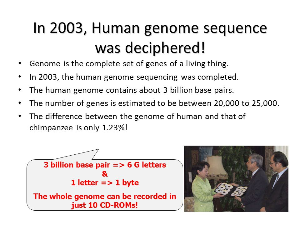 3 billion base pair => 6 G letters & 1 letter => 1 byte The whole genome can be recorded in just 10 CD-ROMs! In 2003, Human genome sequence was deciph