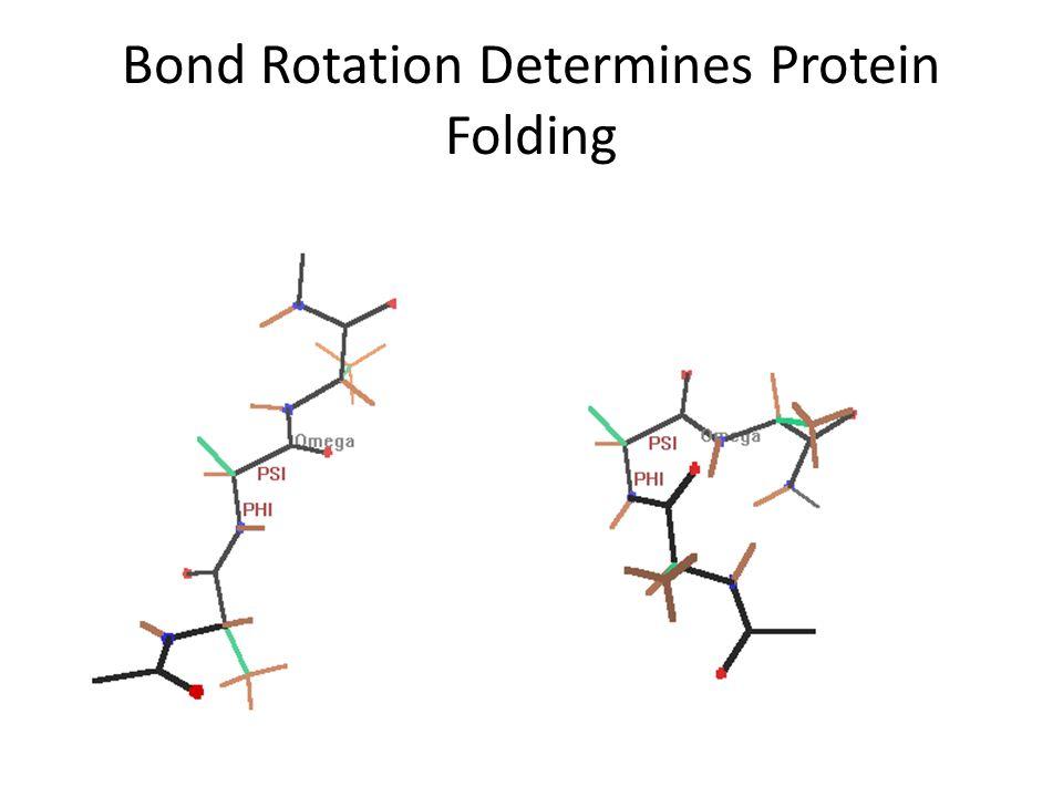 Bond Rotation Determines Protein Folding